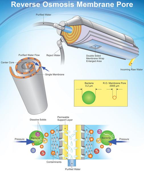 RO membrane diagram